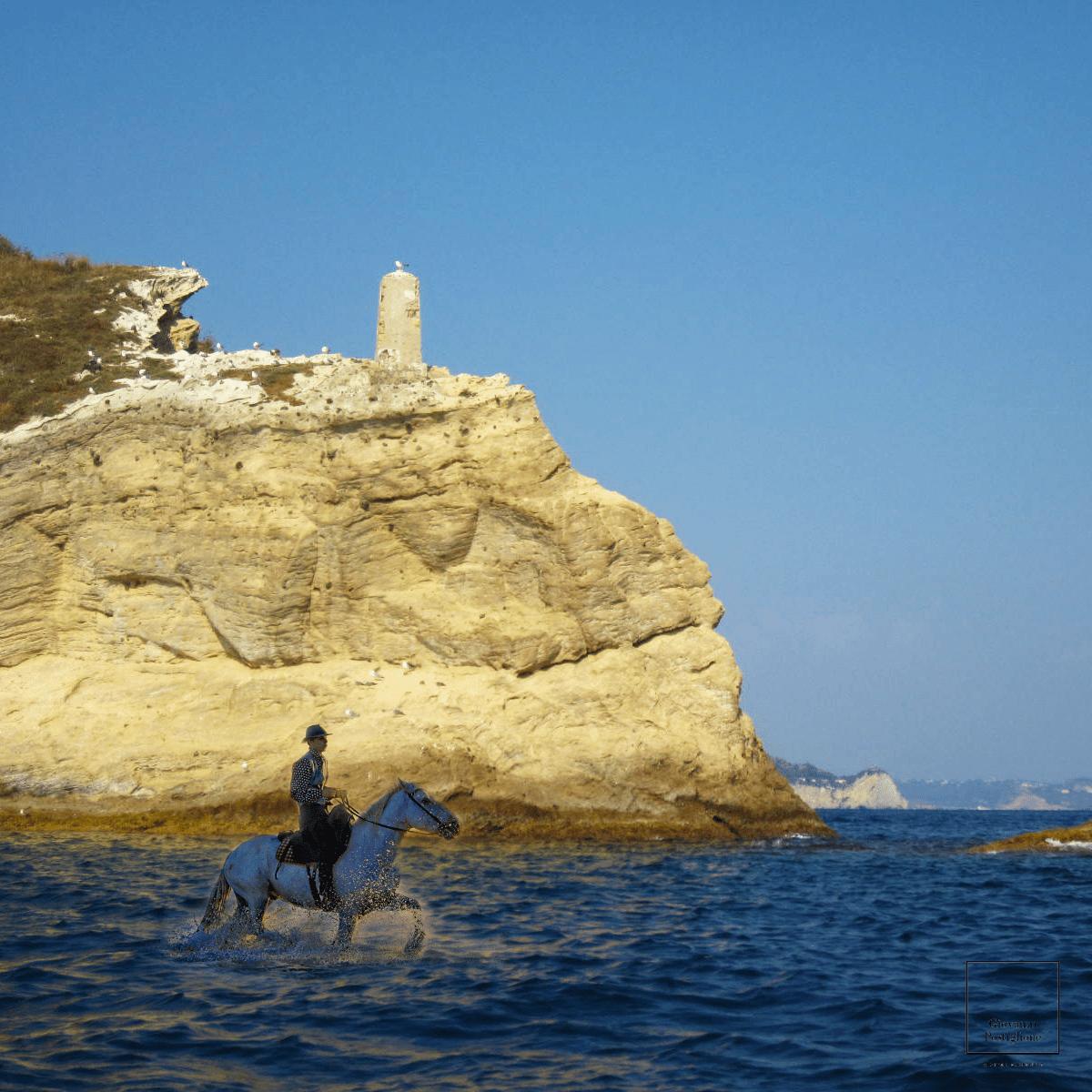 A cavallo sul mare